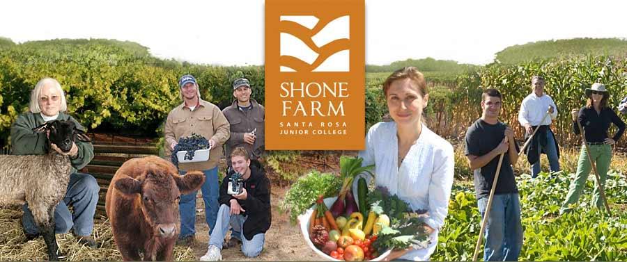 Shone Farm