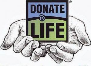 New Donate Life hands